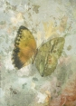 "Butterflies from China, Japan, and Corea: ""Biodiversity Library"":http://biodiversitylibrary.org/page/45490916 Texture: ""Kerstin Frank"":https://www.flickr.com/photos/kerstinfrank-design/9181048645/in/photostream/ Flowers: ""Rijksmuseum"":https://www.rijksmuseum.nl/en/my/collections/150967--sarah-vernon/mijn-eerste-verzameling/objecten#/SK-A-3899,0 Original & vintage art © First Night Design [www.firstnightdesign.wordpress.com]"